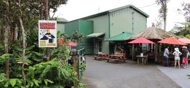 Kona Coffee, Kona, Island of Hawaii